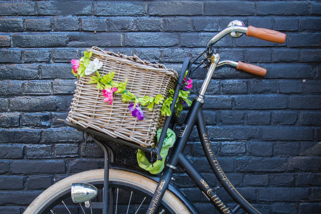 Go on a bike ride.