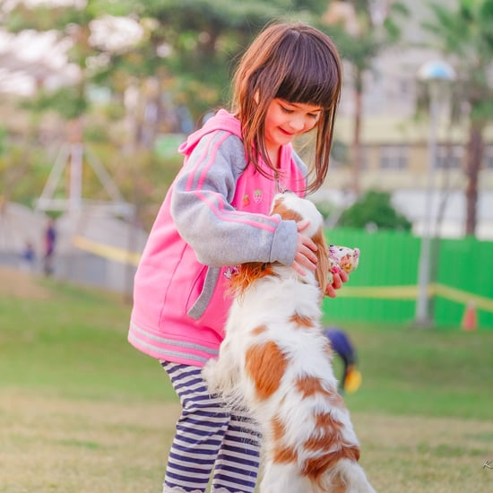 Why Pets Are Not the Same as Kids