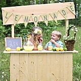 Start a Lemonade (or Hot Cocoa) Stand