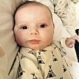 """""""Hi guys. I know I'm only 8 weeks old but I've got a lot going on.... #poppy @jeremiahbrent"""""""
