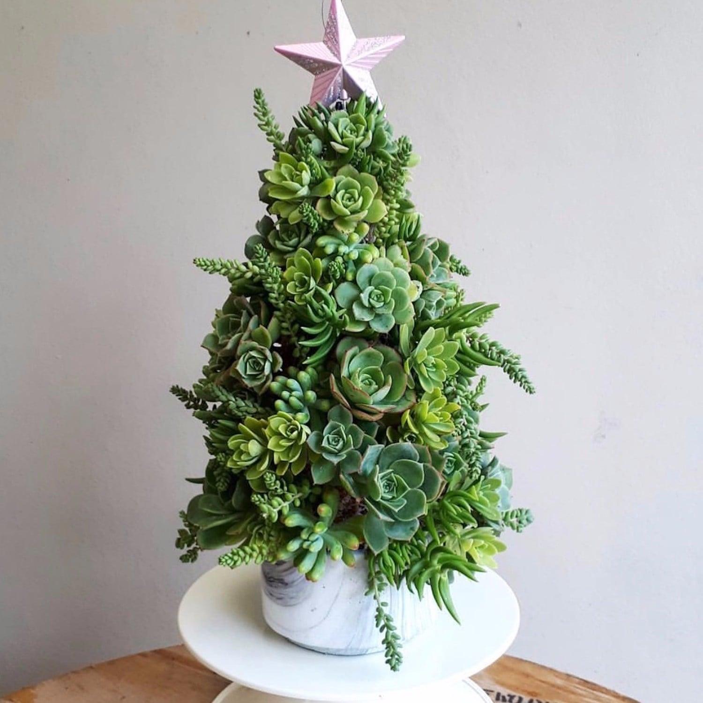 Succulent Christmas Tree Ideas Popsugar Family