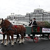 Michelle Obama Welcomes White House Christmas Tree 2016