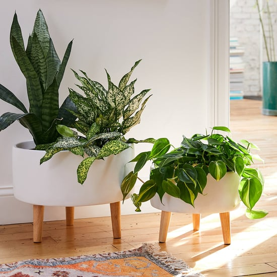 Best and Most Stylish Home Decor 2020