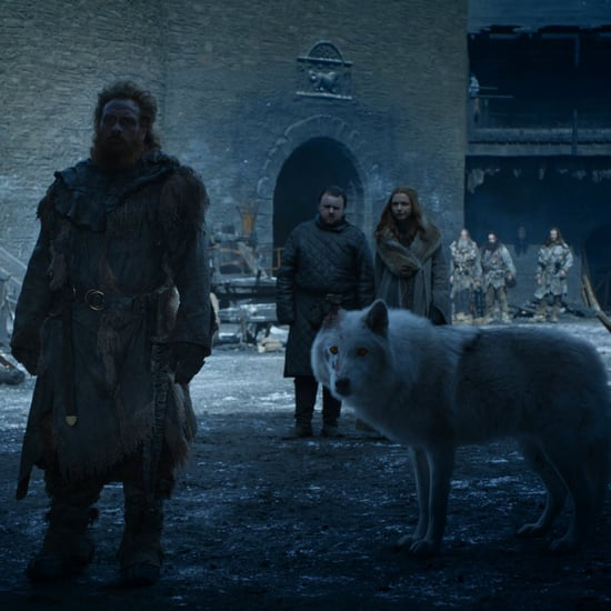 What Happened to Ghost's Ear on Game of Thrones?