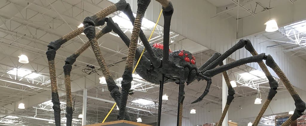 Costco's $200 Giant Animatronic Spider Is Too Realistic