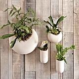 Ceramic Wall Planters ($19)