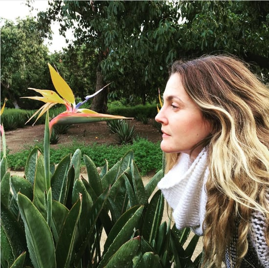 Drew Barrymore Loves Flowers