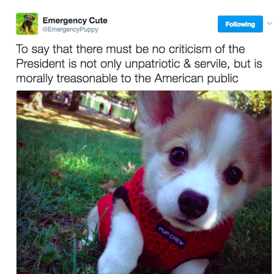 Emergency Cute Tweets About Trump