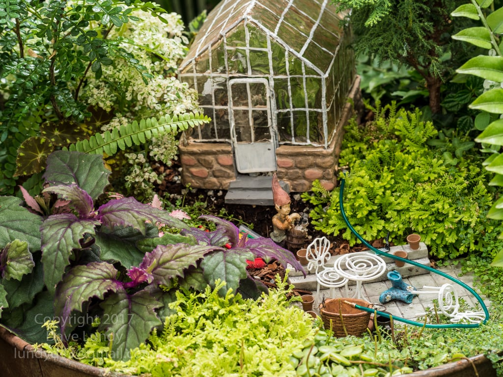Gnome In Garden: How To Make Your Backyard Kid