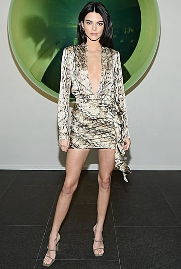 Kendall Jenner Python Print Dress With Hailey Baldwin