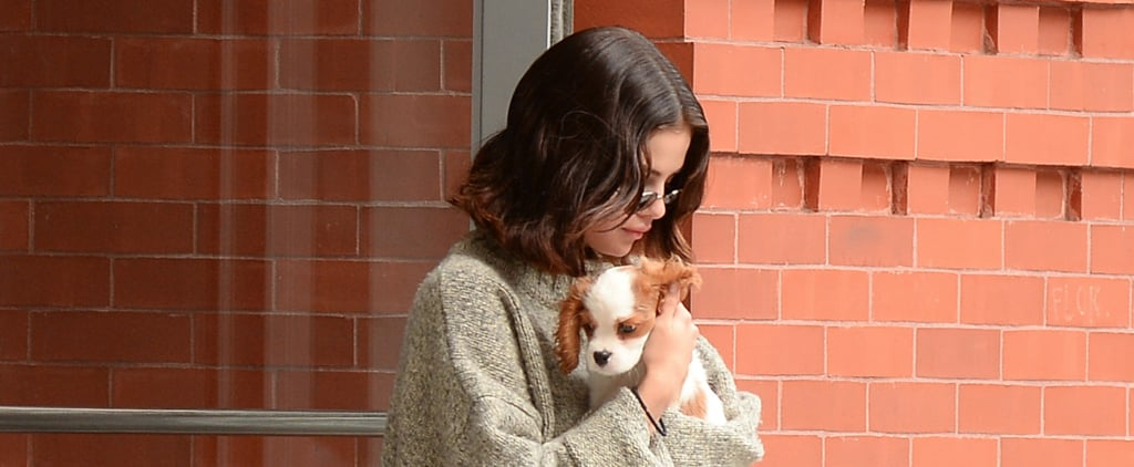 Selena Gomez Was Carrying the Cutest Puppy, But We Were Too Busy Staring at Her Shoes
