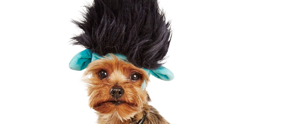 Trolls Halloween Costume For Dogs