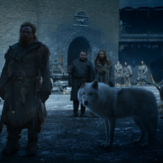 Where Are the Starks' Direwolves on Game of Thrones?