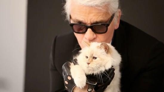 Karl Lagerfelds Cat Choupettes Makeup Line Video Popsugar Fashion