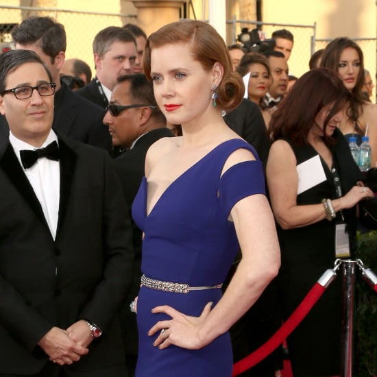 Amy Adams's Dress at SAG Awards 2014