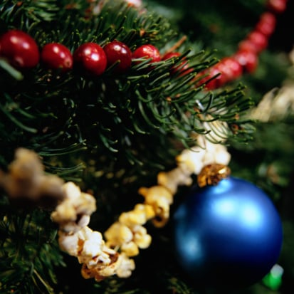 food doesnt belong on the tree - Are Christmas Trees Poisonous To Cats