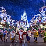 Experience Disney's Yuletide Fantasy Tour.