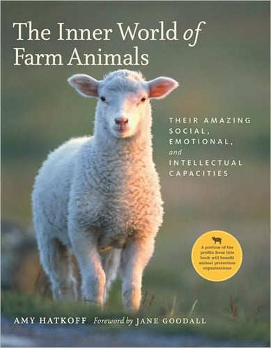 The Inner World of Farm Animals