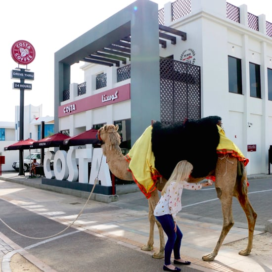 April Fools' Joke? Costa 'Offers Chance To Milk a Camel'