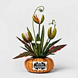 Biting Blossoms Artifical Halloween Plant