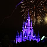 Don't crowd into the Magic Kingdom for the Wishes fireworks show.