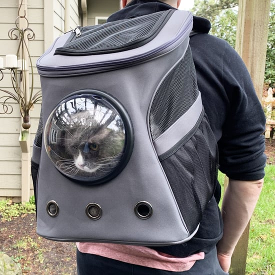 Taylor Swift's Cat Backpack, Review With Pictures