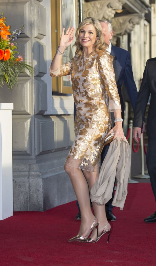 Shop For a Dress Like Queen Maxima's