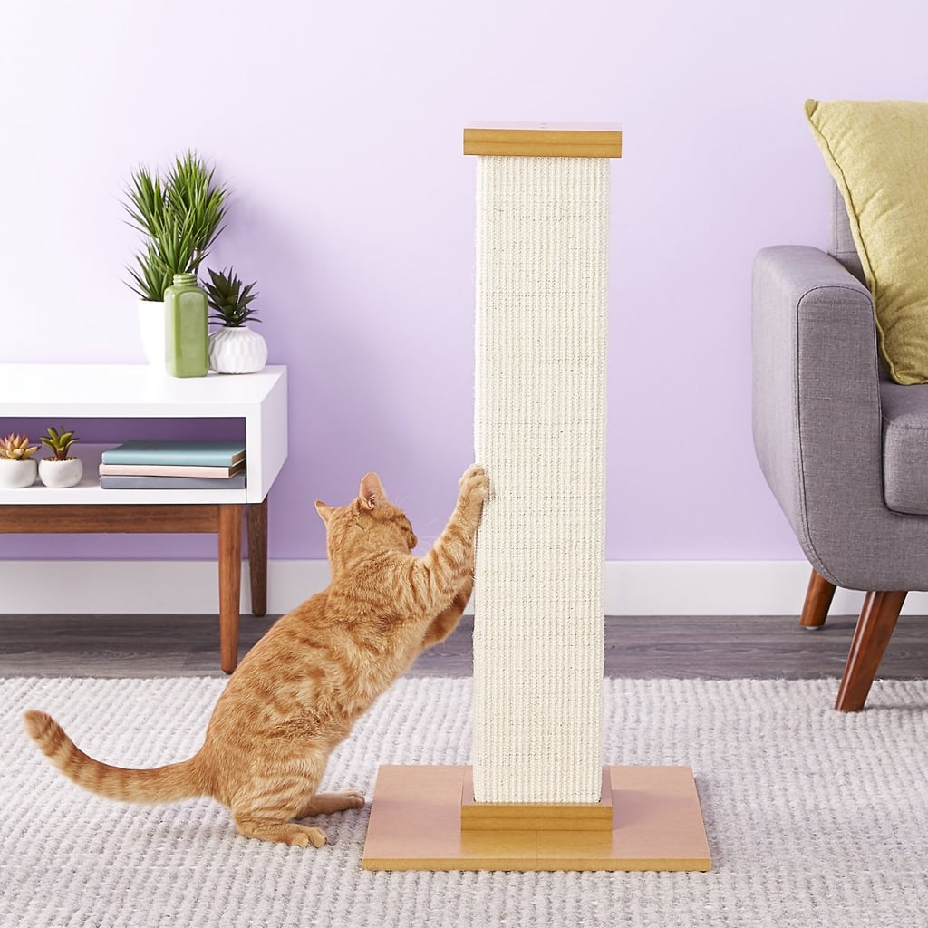 These problem solving products for cats