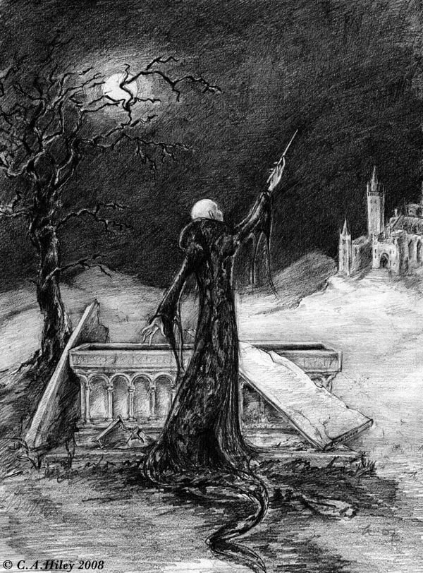 Voldemort and the elder wand harry potter fan art for Elder harry potter