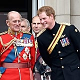 Pictured: Prince Philip and Prince Harry.
