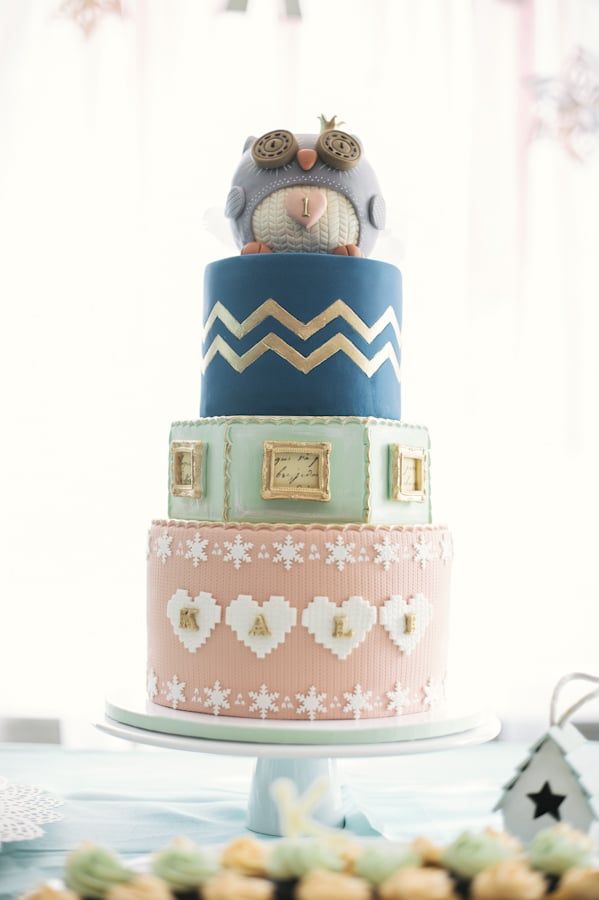 Cozy Owl Cake