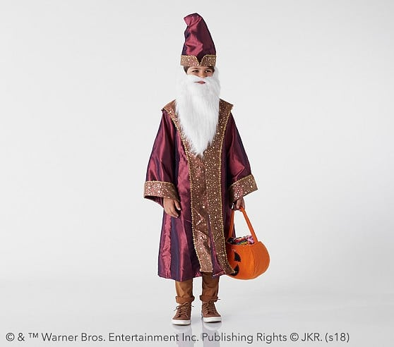 Harry Potter Dumbledore Costume