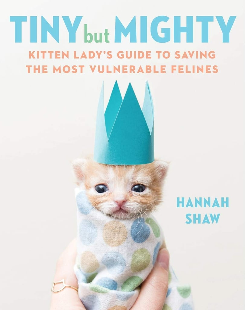 Preorder Tiny But Mighty: Kitten Lady's Guide to Saving the Most Vulnerable Felines ($17) before it hits shelves!