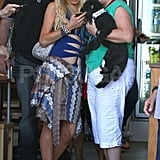 Paris Hilton made friends with a puppy while she wore a blue bathing suit with cut-outs in Australia.