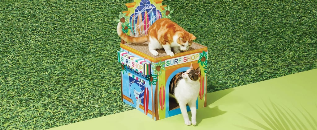 Best Summer Cat Scratch Houses at Target