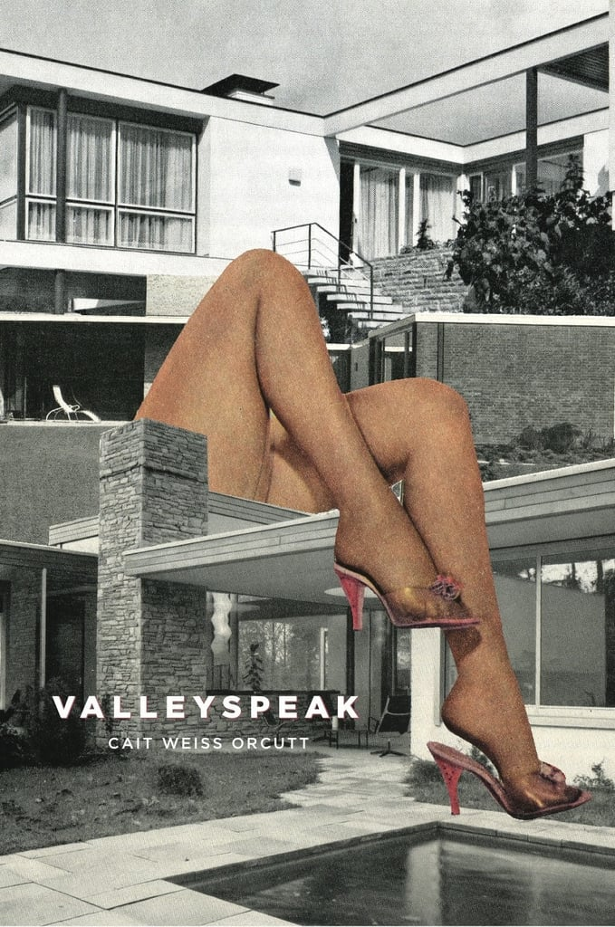 Valleyspeak Book