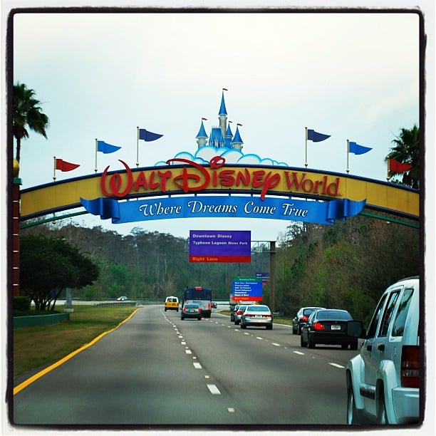 disney world essays Disneyland essays people often fall easily into the notion that theme parks take your imagination to a different place in time when disney land was built, it was.