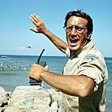 Police Chief Martin Brody From Jaws