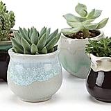 T4U Small Ceramic Succulent Planter Pots