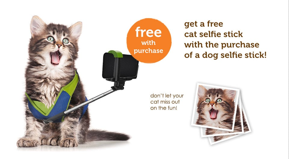 pet selfie stick popsugar tech