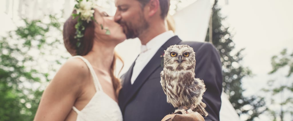 Forest Wedding With Tepee and Owl