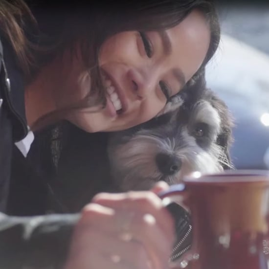 Jamie Chung's Dog, Ewok | Video