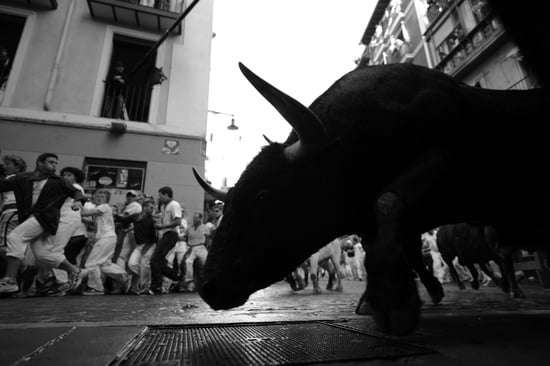 Running of the Bulls: Cruel Tradition or Bunch of Bull-oney?