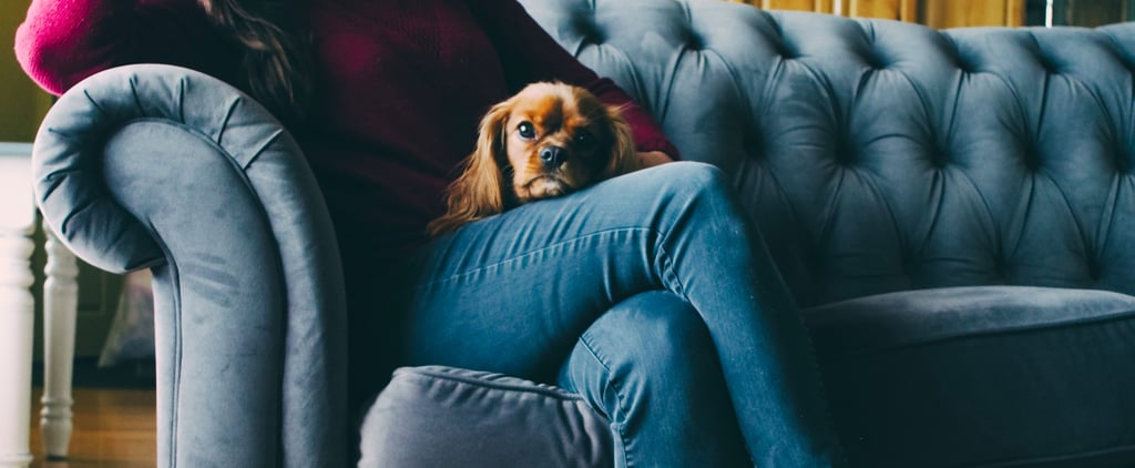 5 Ways My Pets Helped With My Depression and Anxiety