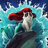 Grumpy Cat Ariel