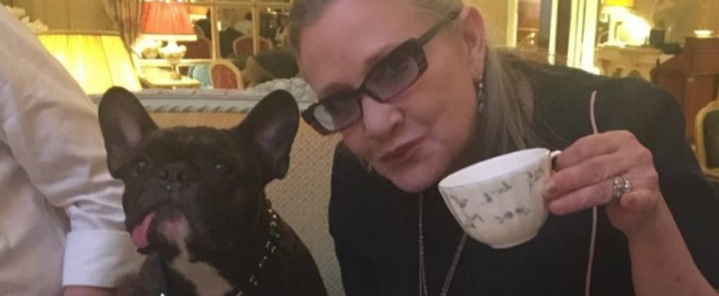 14 Sweet Photos of Gary and Carrie Fisher Together