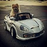 Is this where I valet? Source: Instagram user larsonga