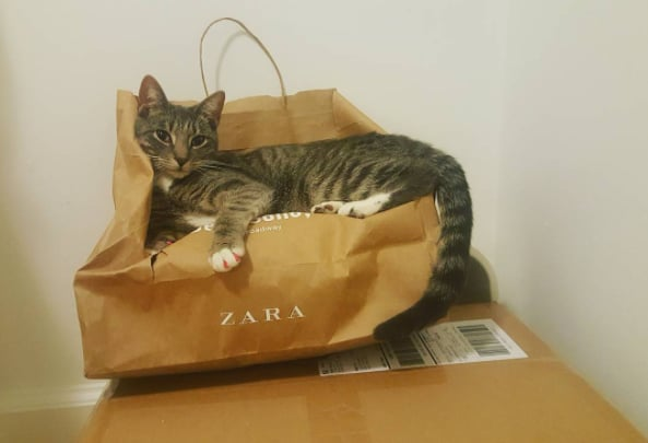 You've Started Hoarding Shopping Bags and Empty Boxes Like It's Your Job