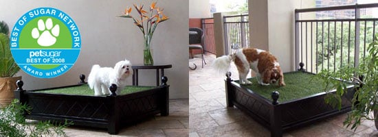 The Results Are In: Craveworthy Luxury Item