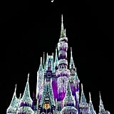 Best Things About Disney World